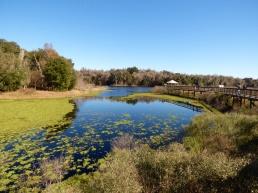 Paynes Prairie Preserve State Park