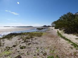 Low tide at Cedar Key.